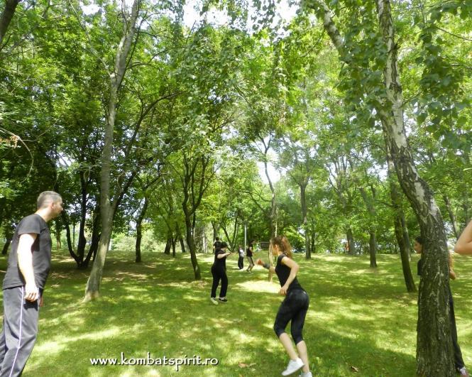 kombat spirit arte martiale parcul titan alexandru ioan cuza