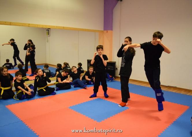 DSC_0032 kombat spirit arte martiale