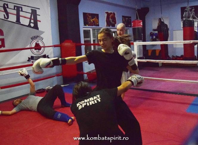 kombat spirit arte martiale