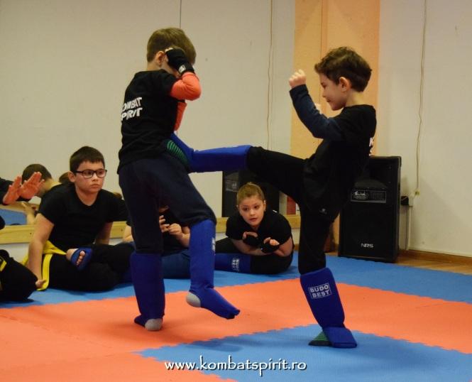 DSC_0921 kombat spirit arte martiale