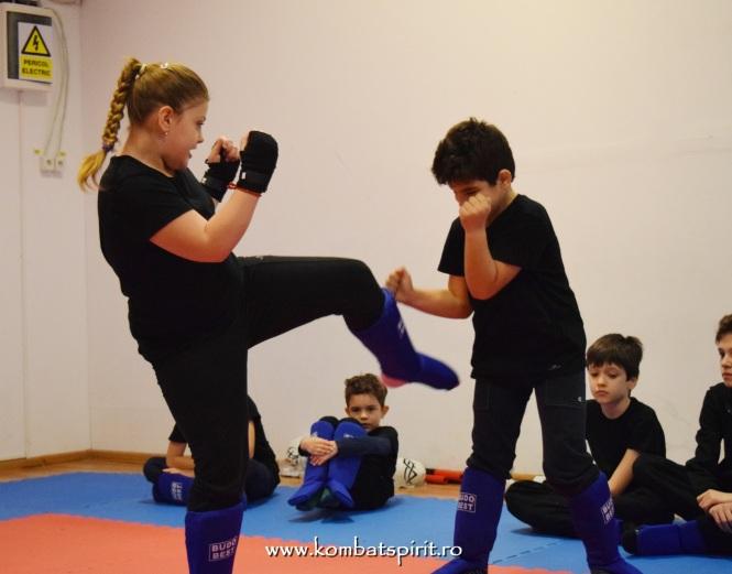 DSC_1005 kombat spirit arte martiale
