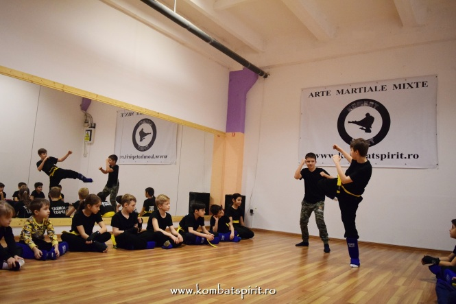 DSC_2281 kombat spirit arte martiale