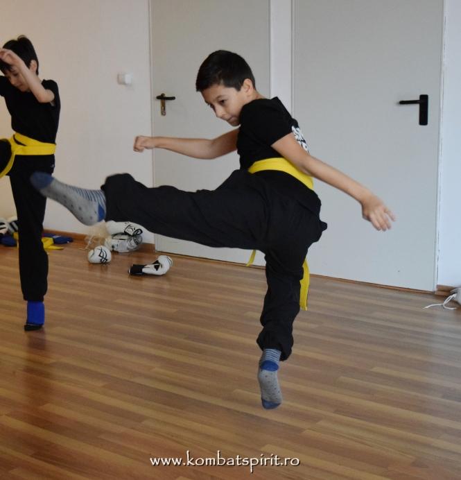 2DSC_0530 kombat spirit arte martiale bucuresti