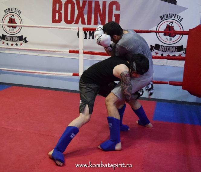 DSC_0012 kombat spirit arte martiale