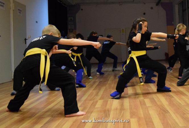 DSC_3333 kombat spirit arte martiale bucuresti