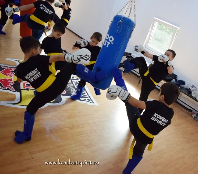 f2731456 Kombat Spirit Bucuresti arte martiale